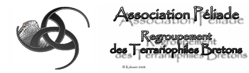 Forum de l'association Péliade