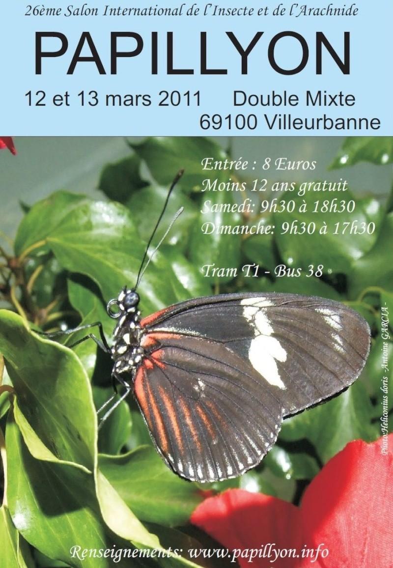 papillyon 2011 12 13 mars double mixte villeurbanne