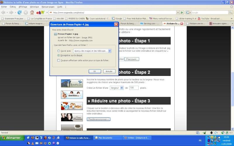 http://i30.servimg.com/u/f30/11/59/23/89/reduir11.jpg