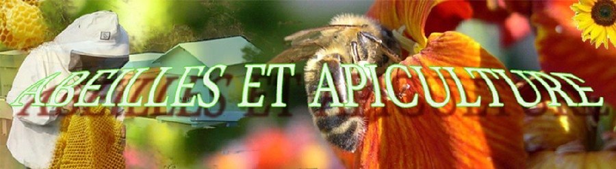 information about apiculture