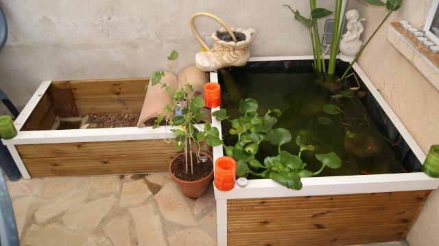 reflexion cr ation d 39 un bassin hors sol besoin de conseil. Black Bedroom Furniture Sets. Home Design Ideas