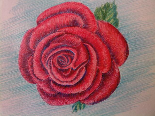 rose rouge. Black Bedroom Furniture Sets. Home Design Ideas