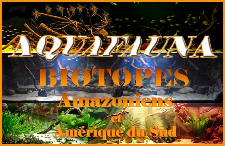 Aquafauna Biotopes Amazoniens et Amérique du Sud