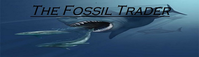 The Fossil Trader