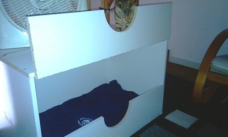 comment fabriquer une caisse de mise bas page 2. Black Bedroom Furniture Sets. Home Design Ideas