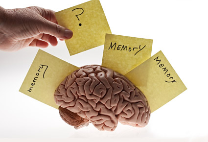 memory loss and cognitive impairment of the elderly The emory alzheimer's disease research center has a major research emphasis on learning more about normal age related memory loss, mild cognitive impairment and.