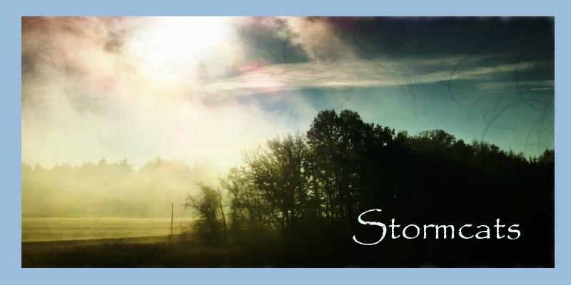 Stormcats