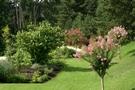 Photos gratuites et libres de droits de Parcs et de Jardins